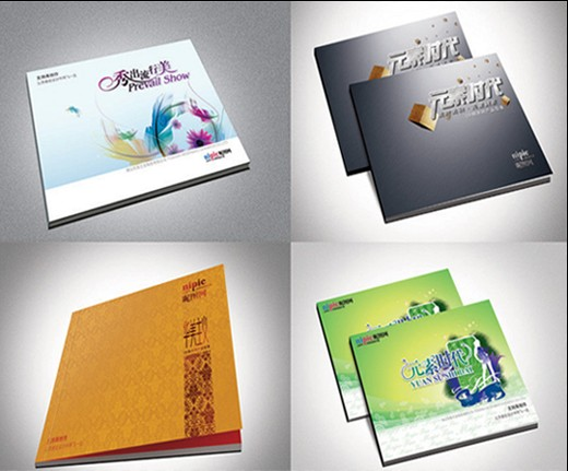 楼书的规划设计、户型介绍、会所介绍、物业管理介绍,美观新颖
